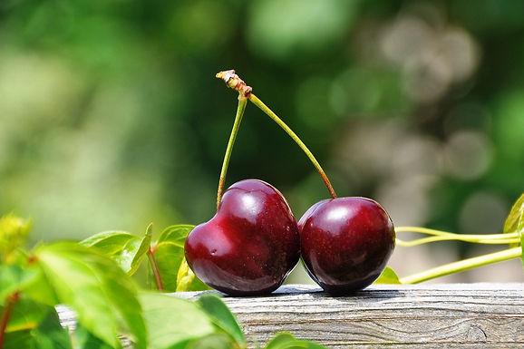 Cherry, Pistachio, Ricotta Cake