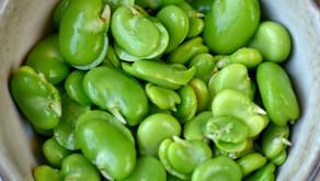 Sarah Raven's Warm Broad Bean Salad