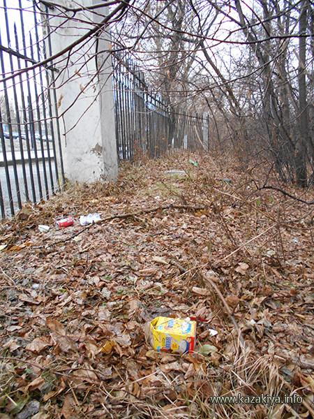Бытовой мусор со стороны ул. Волочаевская проникает через забор и оказывается на территории Дендрария. Так было до трудового экологического десанта!