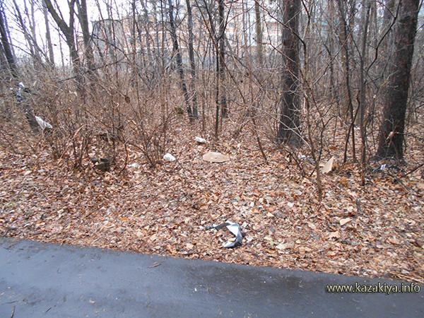 С расположенной неподалёку стройки ветер постоянно наносит много строительного мусора