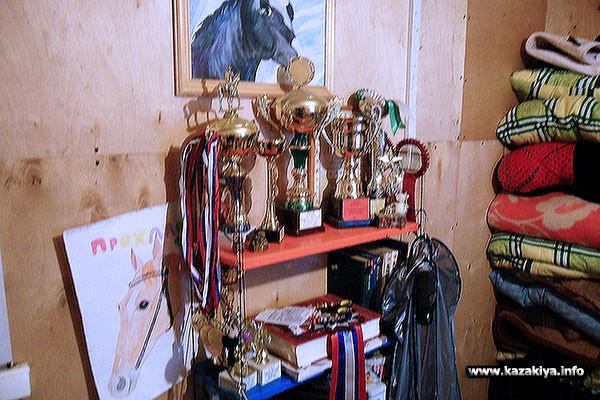 Спортивные трофеи клуба