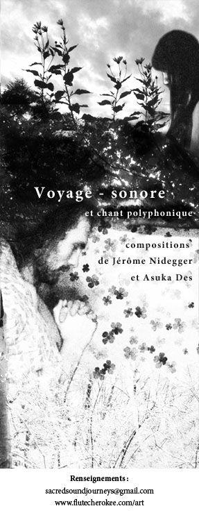 voyagesonore_webpage.jpg