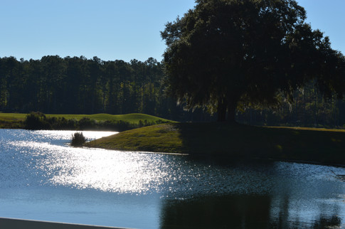 Southern Golf At Its Finest - Ford Plantation Renovated