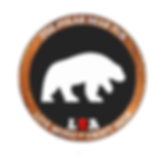 polar badge.png
