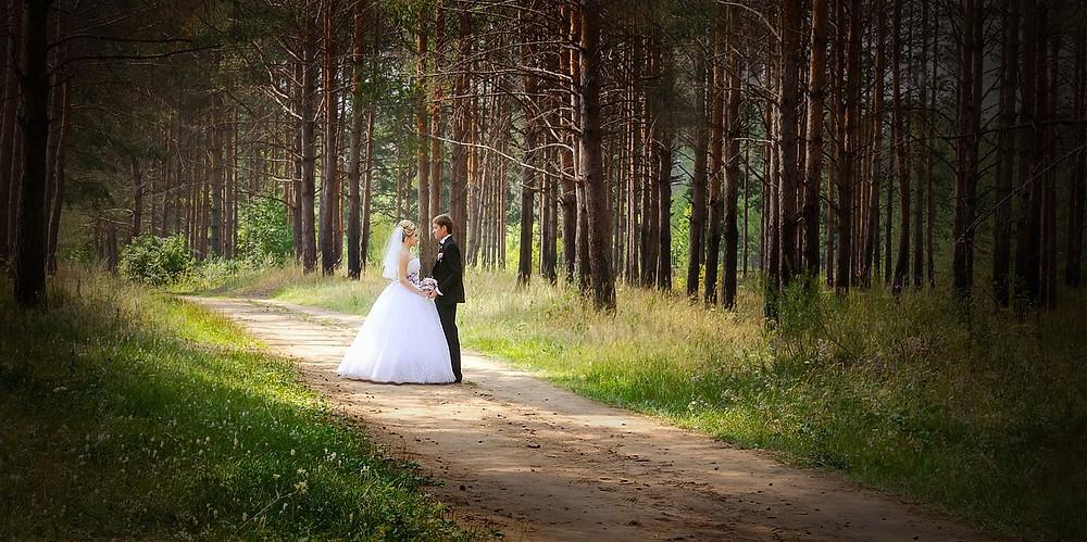 wedding-626020_1280.JPG