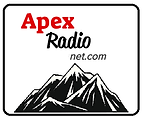 apex online logo.png