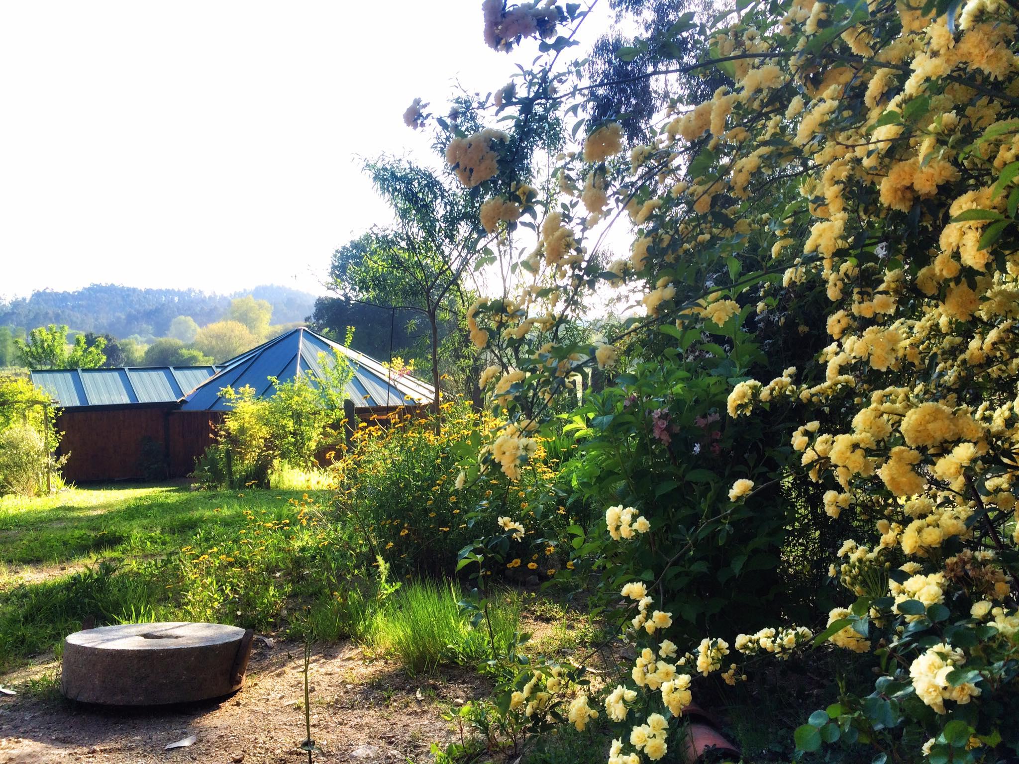 Jardin y templo Nixi Pae