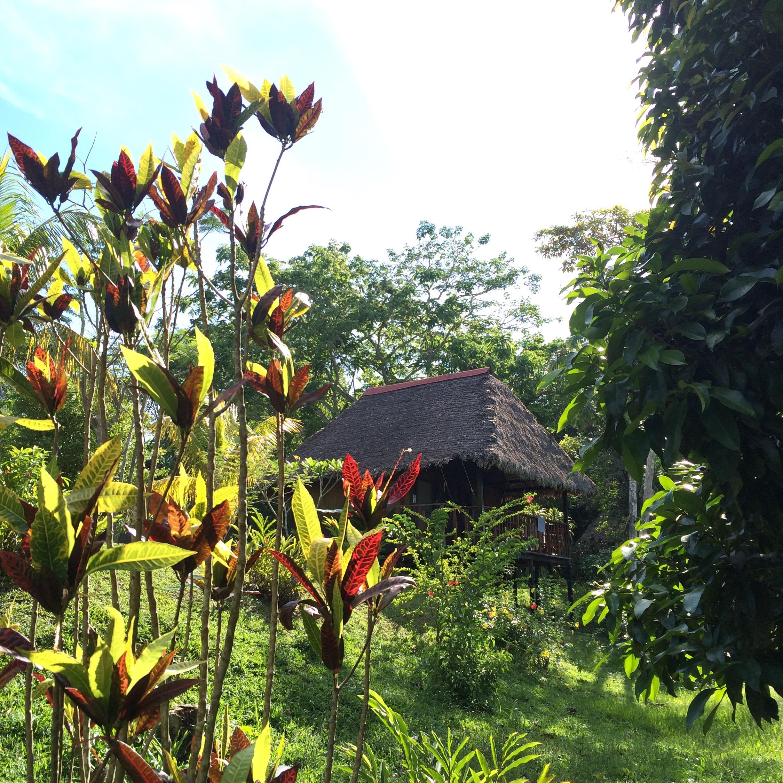 Bungalow en Corto Maltes Amazonia
