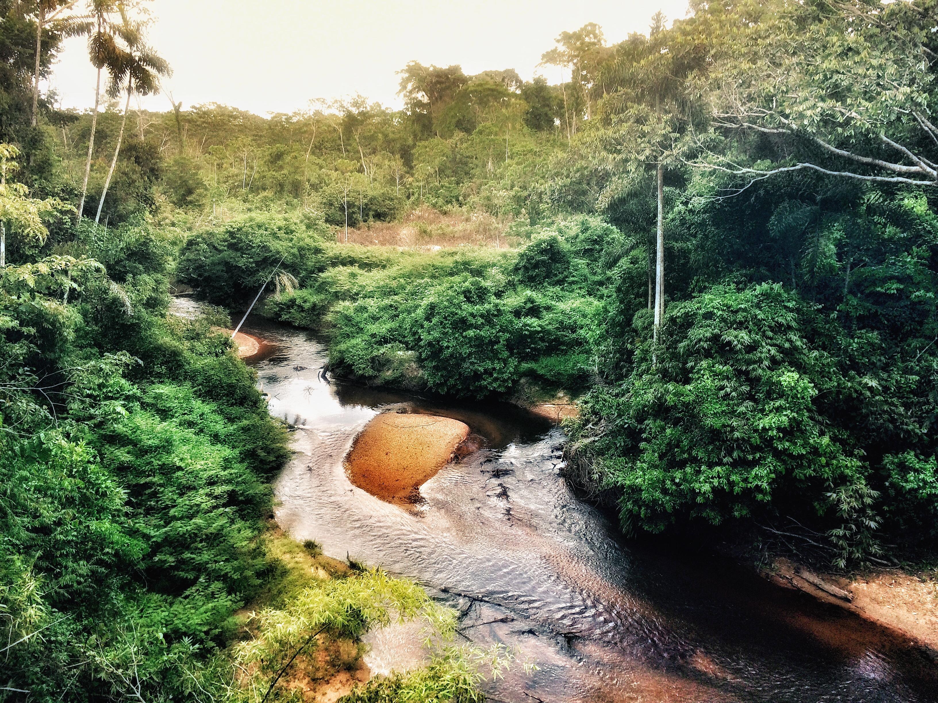 Quebrada en Corto Maltes Amazonia
