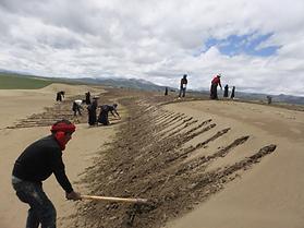 第二步:翻沙土、备种植.png