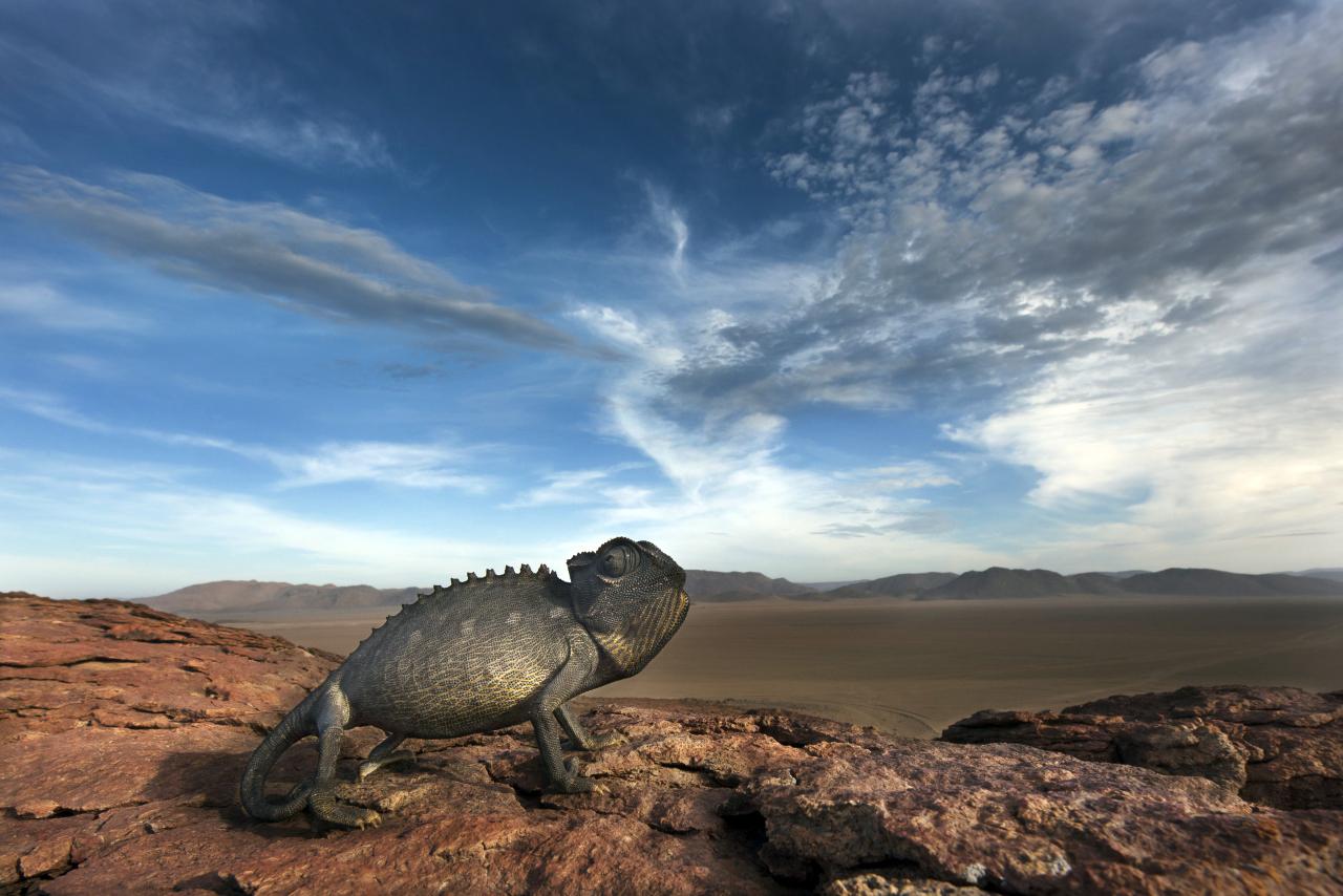 MESSUM CRATER, Namibia