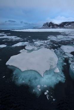 sea ice_high arctic1