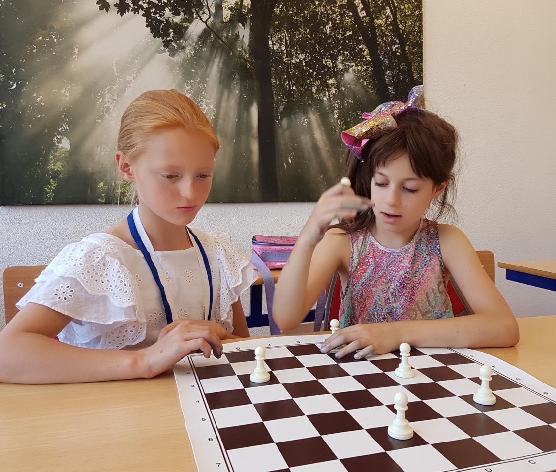 шахматы-5