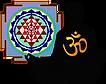 Logo - Shaktipat for spiritual awakening