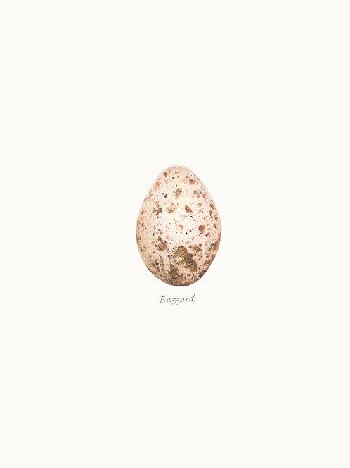 Single Egg Print 04 – Buzzard