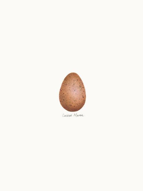 Single Egg Print 01 – Cuckoo Maran