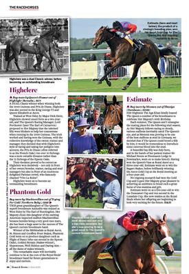 H&H Queen's favourite horses3.jpg