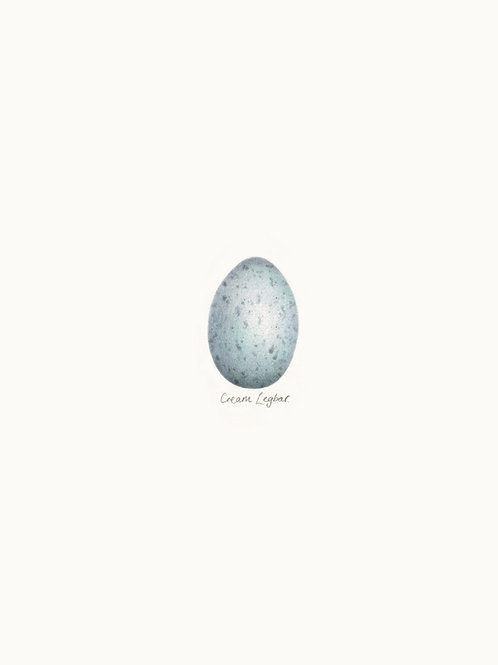 Single Egg Print 02 – Cream Legbar