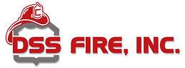 DSSF_logo_300.jpg