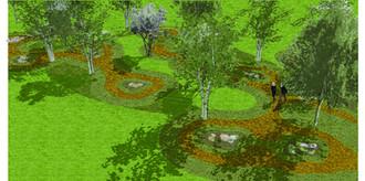 Bioretention Basin Planting