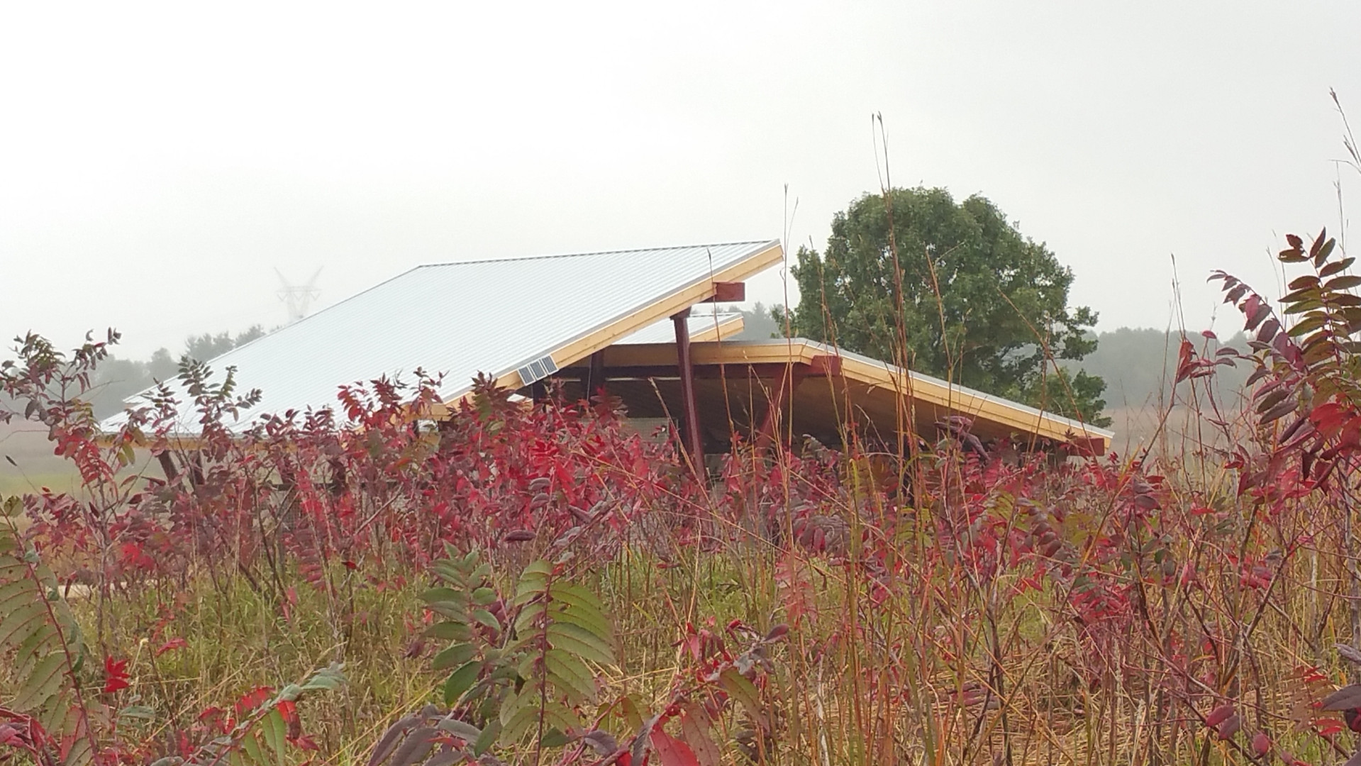 Visitor Pavilion in Fall