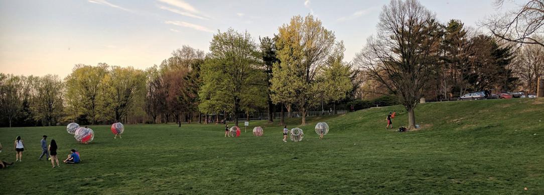 """""""The Bowl"""" at Van Dyck Park"""