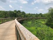 Neabsco Creek Boardwalk
