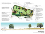 Vienna Town Green Plan and Section