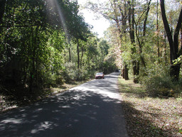 Wooded character area of the Byway.