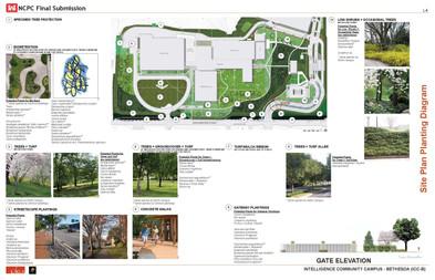 Diagrammatic Planting Plan