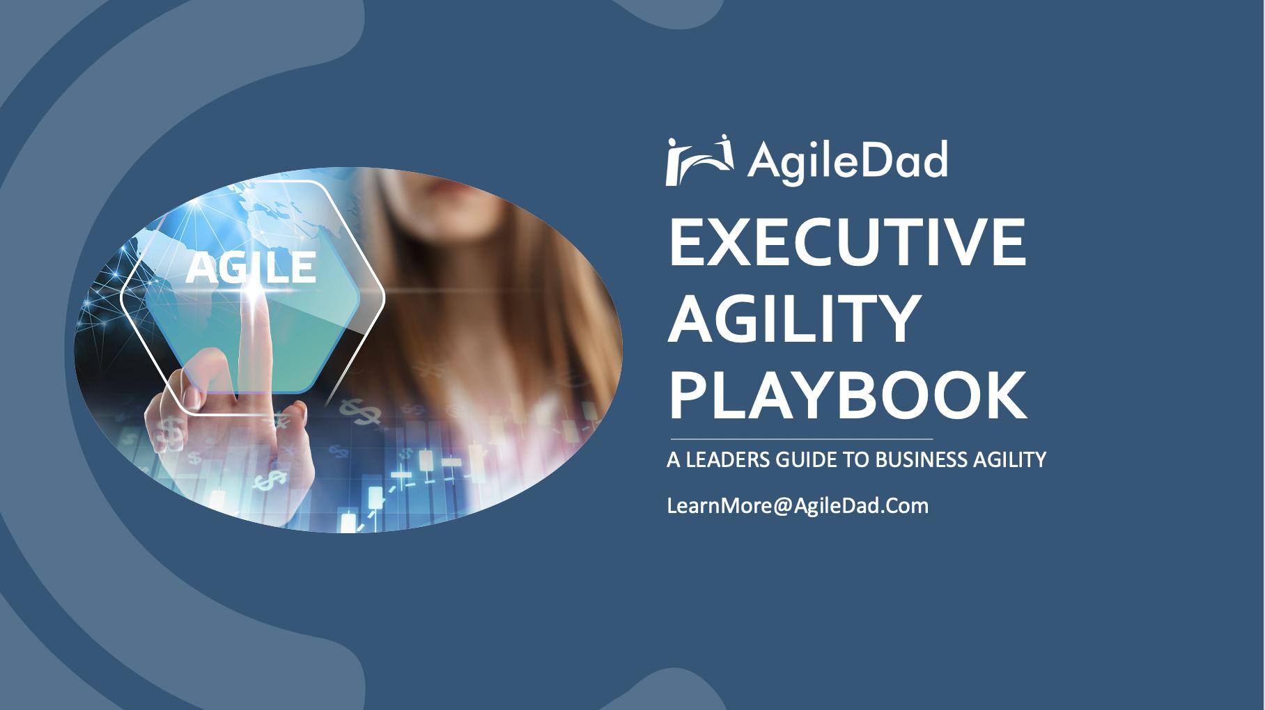 Executive Agility Playbook