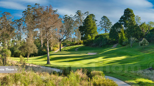 George Golf Club 15th Par 3 a.jpg