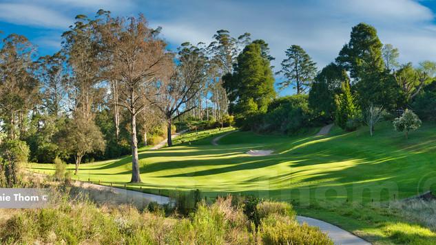 George Golf Club 15th Par 3 a.jpg