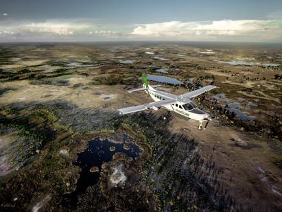 Connecting Botswana and Namibia - Desert Express Flights