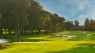 Houghton Golf Club 17th Par 4 a.jpg
