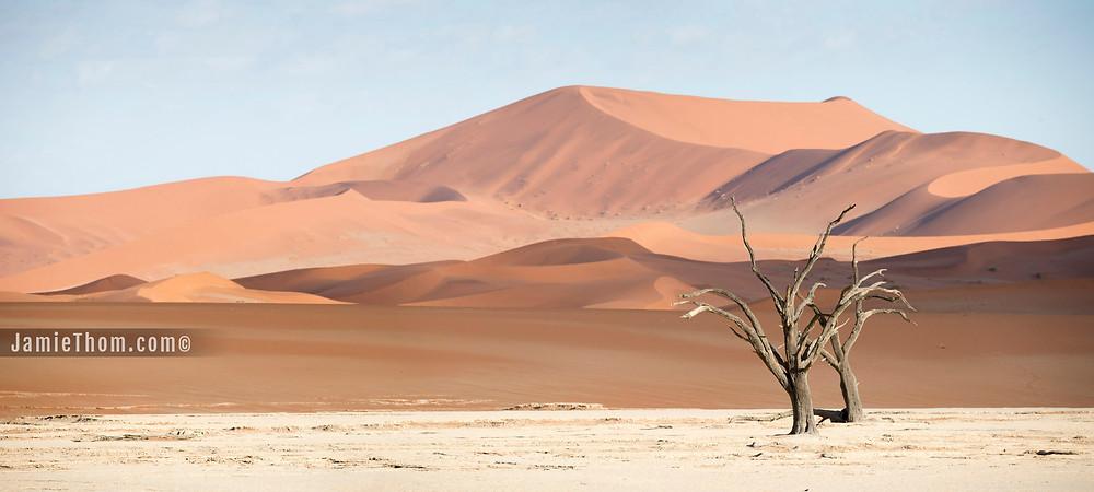 Deadvlei_11_Namibia_Jamie_Thom
