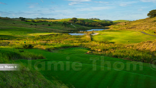 Simbithi Golf Course 11th Par 3 b.jpg
