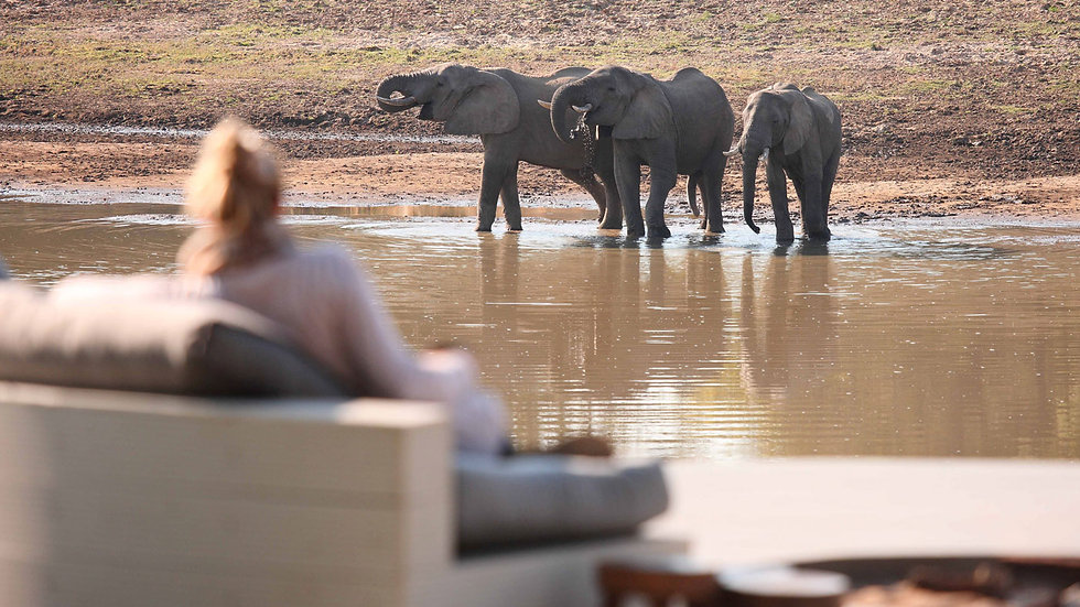 KING LEWANIKA LODGE - 4 nts