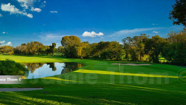 Randpark Bushwillow 17th Par 5 b.jpg