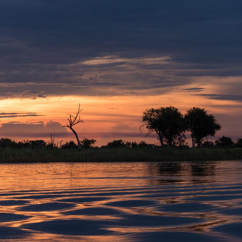 Botswana_Safari_Company__98A0954