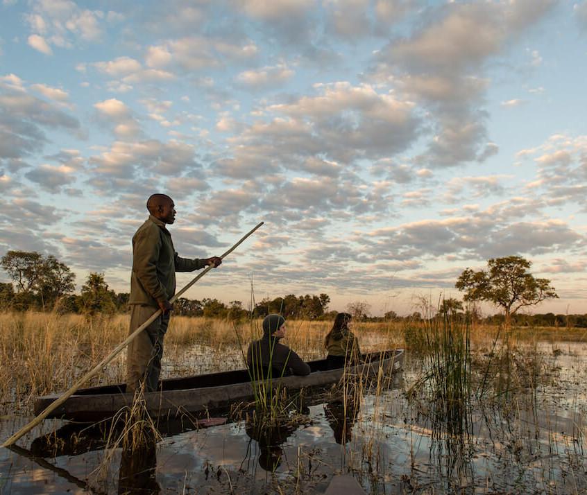 20The-Jackal-and-Hide-Mokoro-safari