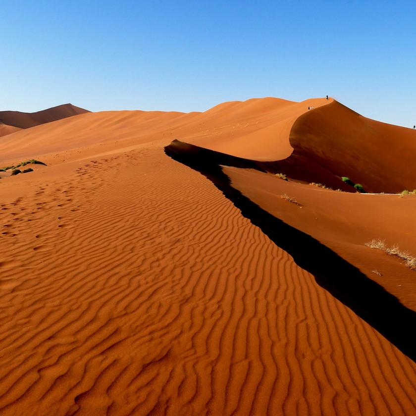 Patterns  - Namibia safari