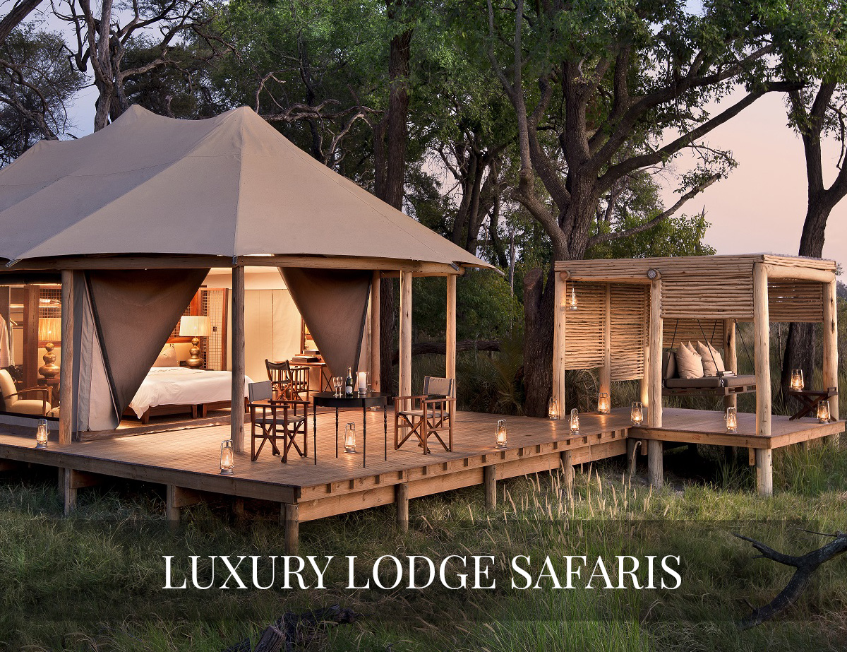 LUXURY SAFARIS BOTSWANA