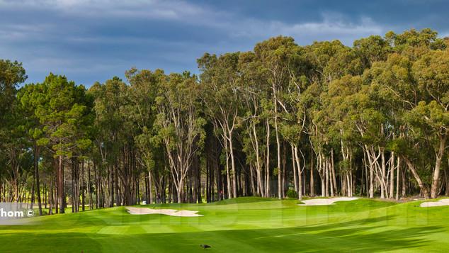Hermanus Golf 6th Par 5 b.jpg