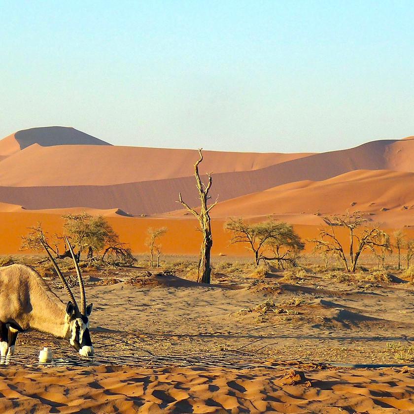 Sossusvlei - Namibia safari