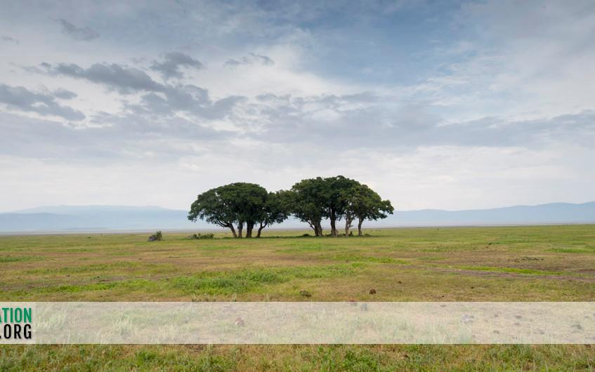 Ngorongoro Crater Jamie Thom 13