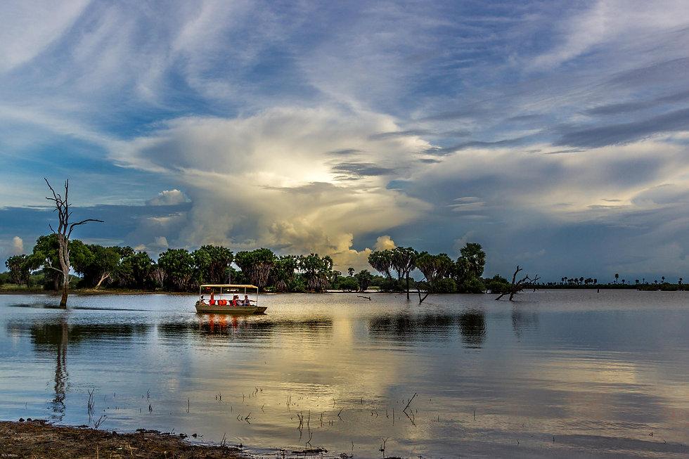 Boat Safari_1.jpg
