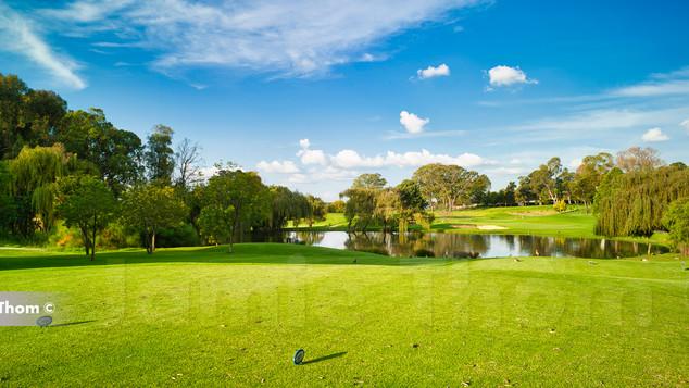 Houghton Golf Club 16th Par 3 c.jpg