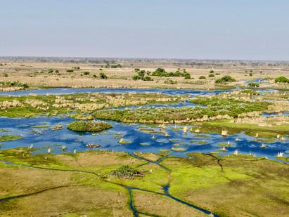 Okavango Delta Safari from Above