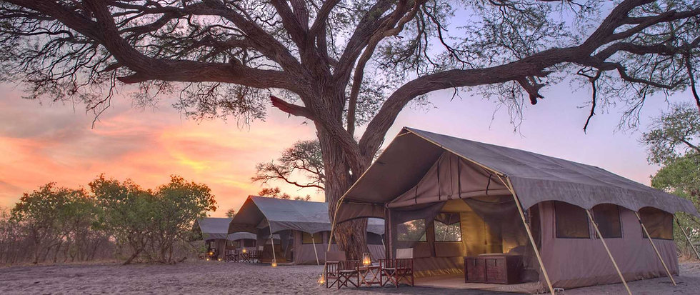 CANVASING BOTSWANA - 7 Nights